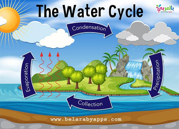 صورة عن حالات الماء في الطبيعة بالانجليزي
