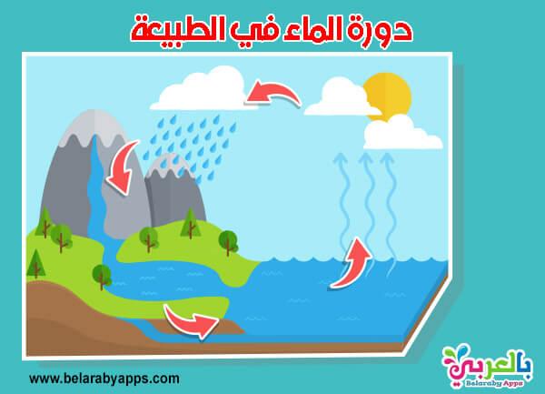 بحث عن دورة الماء في الطبيعة