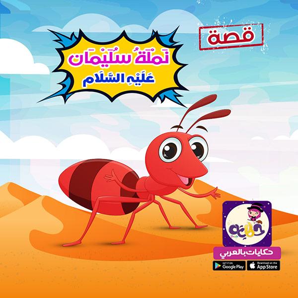 قصص الحيوانات في القرآن للأطفال :: قصة نملة سليمان للاطفال مصورة