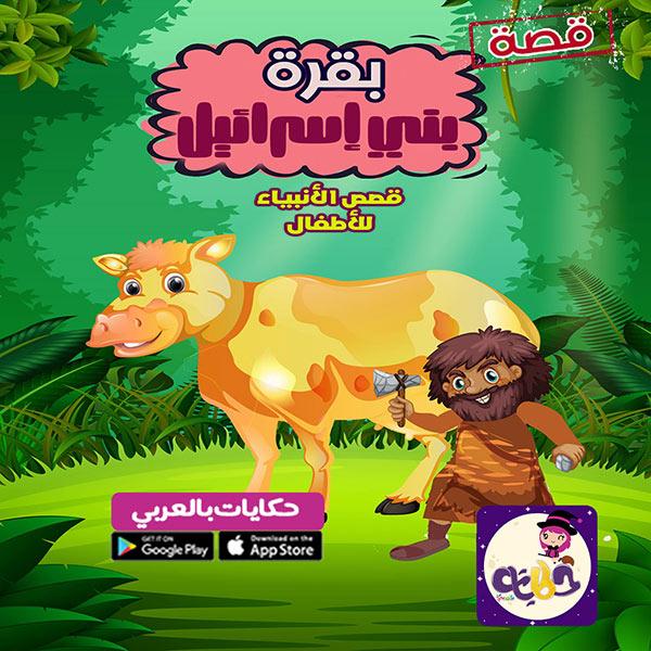 قصص الحيوانات في القرأن للأطفال :: قصة بقرة بني إسرائيل