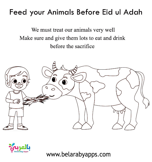Feed Your Animal Before - Eid ul Adha Coloring Pages & Activity Sheets