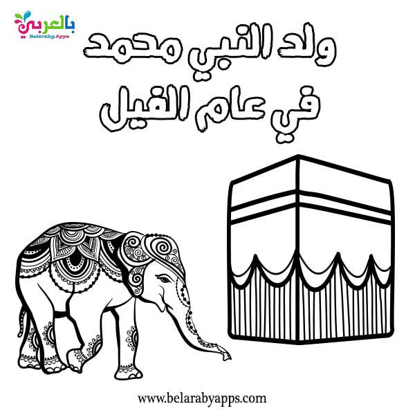 Year of the Elephant - Muhammad Prophet birth