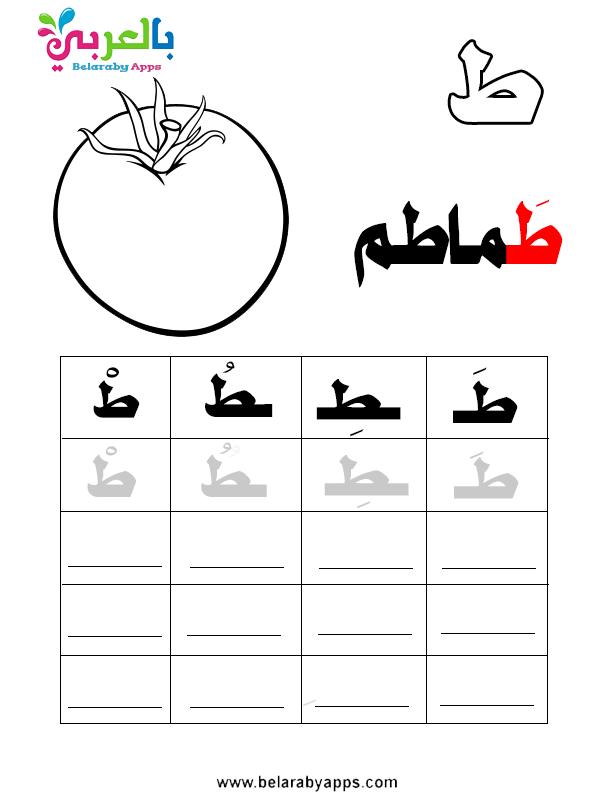 الحروف الهجائية بالحركات الثلاث والسكون pdf