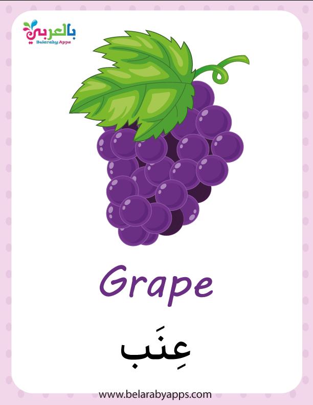 أسماء الفواكه بالعربية والانجليزية بالصور