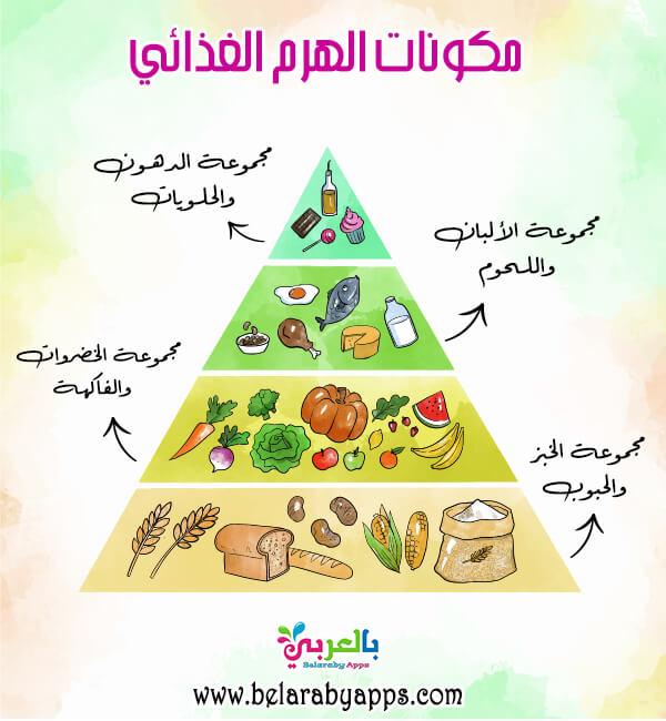 الهرم الغذائي للاطفال