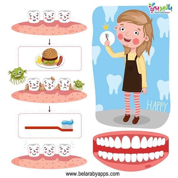 وسيلة تعليمية عن الاسنان للأطفال