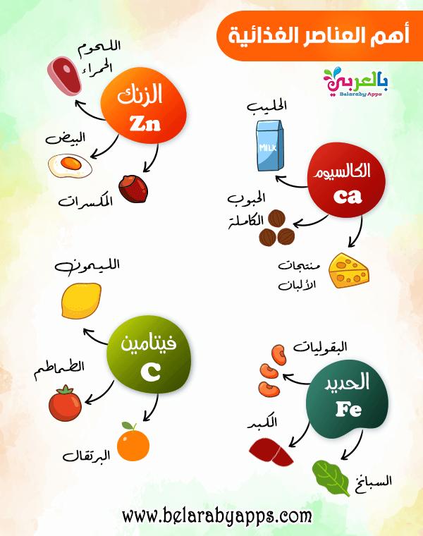 بالصور أهم العناصر الغذائية ومصادرها .. انفوجرافيك