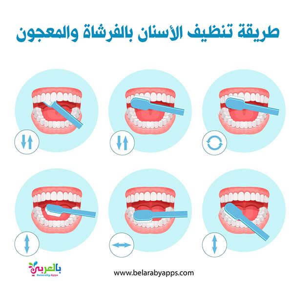 طريقة غسل الأسنان - خطوات تنظيف الاسنان بالصور