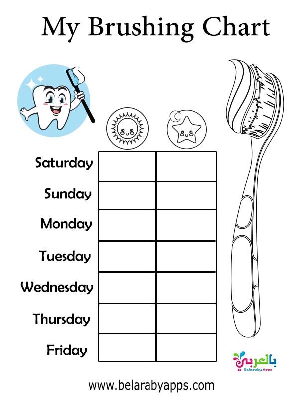 جدول تنظيف الأسنان اليومي