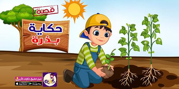 قصة عن مراحل نمو النبات للاطفال