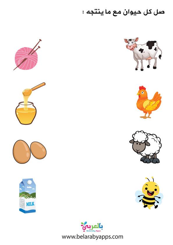 فوائد الحيوانات بالصور- افكار وحدة الحيوانات رياض اطفال