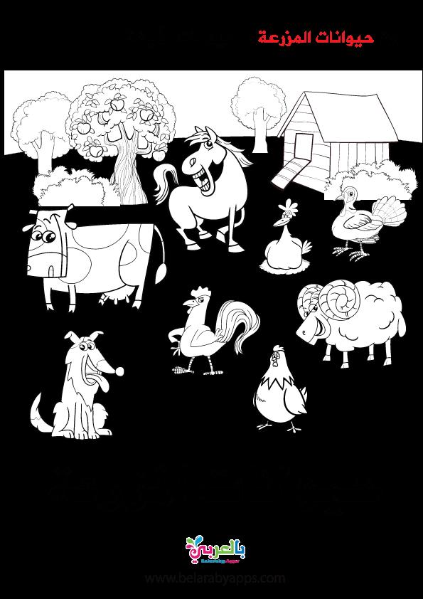 طريقة شرح وحدة الحيوانات لرياض الأطفال