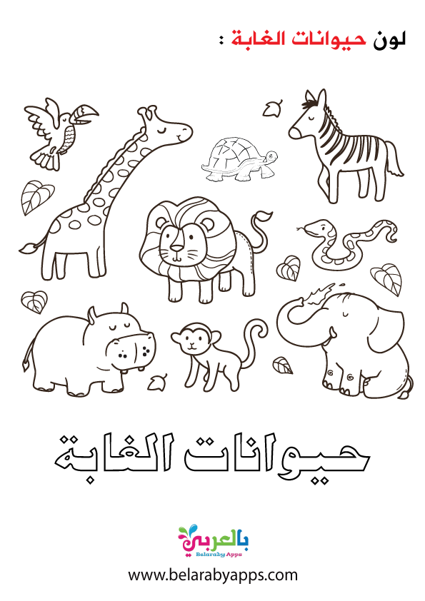 البوم صور حيوانات الغابة للتلوين رياض اطفال