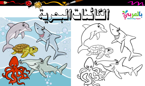 صور تلوين الكائنات البحرية وحدة الماء - رسومات اسماك للتلوين