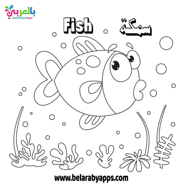 رسومات اسماك للتلوين Fish Coloring Book