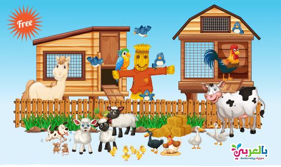 بطاقات تعليم حيوانات المزرعة لرياض الأطفال