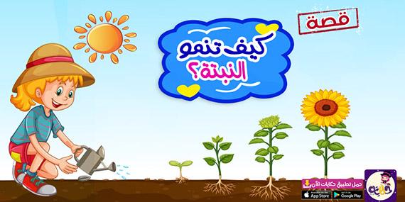 قصة مصورة عن اجزاء النبات للاطفال