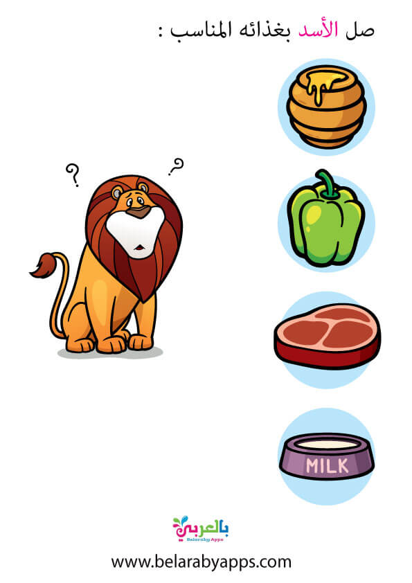 غذاء الأسد للاطفال .. أنشطة غذاء الحيوانات