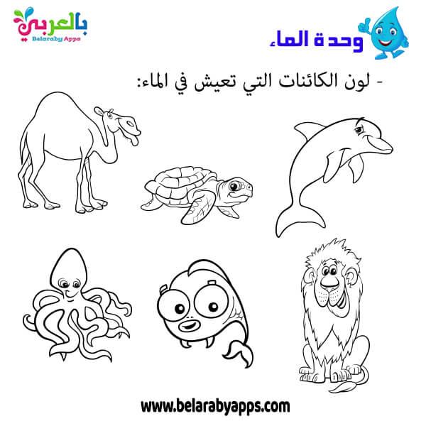 اوراق عمل عن الكائنات التي تعيش في الماء وحدة الماء رياض اطفال