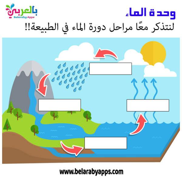أوراق عمل دورة الماء في الطبيعة - انشطة وحدة الماء
