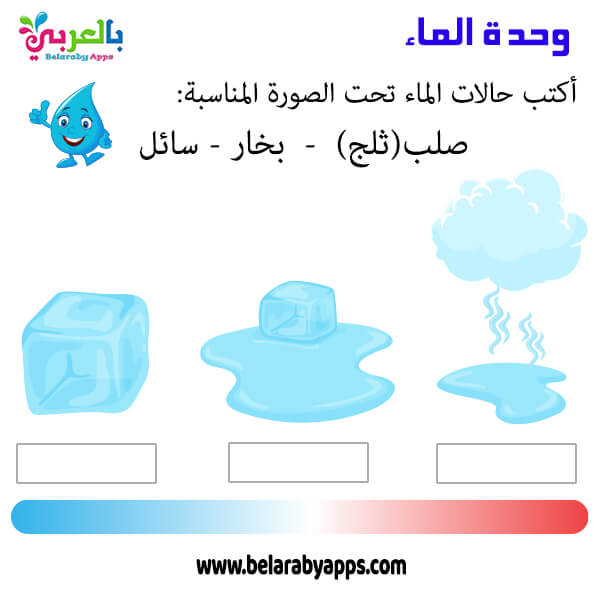 ورقة عمل عن حالات الماء الثلاث للاطفال - نشاط وحدة الماء
