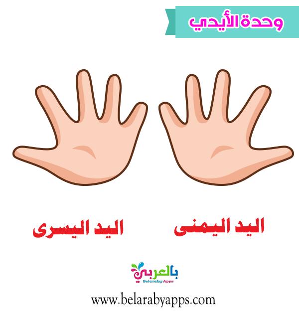 التعرف على اليد .. اعلان وحدة الأيدي لرياض الأطفال
