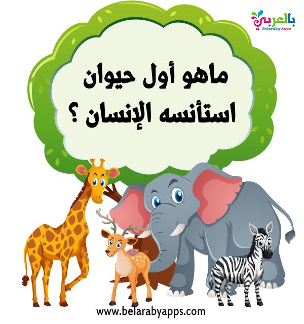 اسئلة سهلة للاطفال عن الحيوانات اسئلة مسابقات معلومات عامة