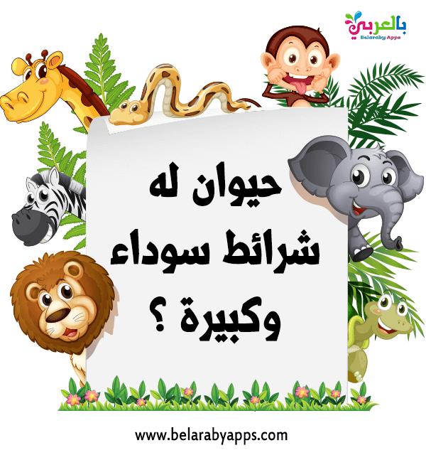 بالصور اسئلة سهلة للاطفال عن الحيوانات