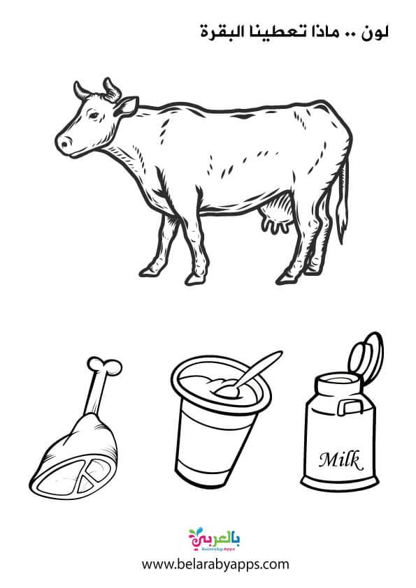 ورقة عمل ماذا تعطينا البقرة للتلوين