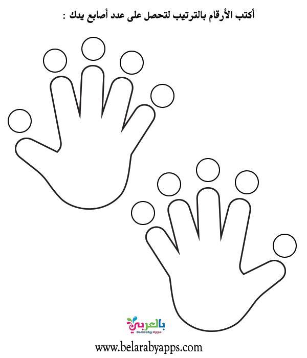 أوراق عمل عن الأيدي