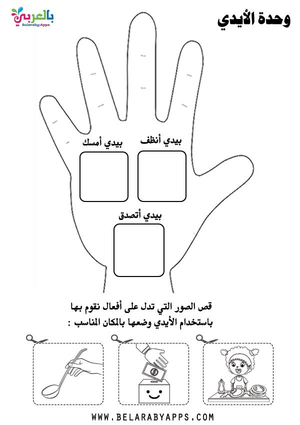تمارين ادراكية لوحدة الأيدي رياض اطفال