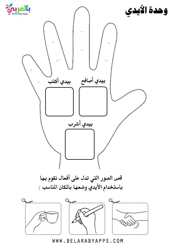 نشاط عن الأيدي لرياض الاطفال
