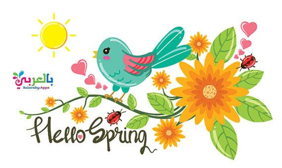 صور خلفيات الربيع 2021 - اجمل الصور وخلفيات عن فصل الربيع