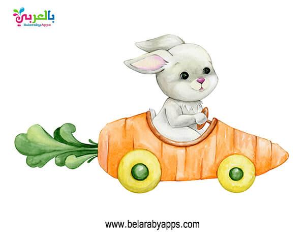 صور الربيع للاطفال .. ارنب وجزر