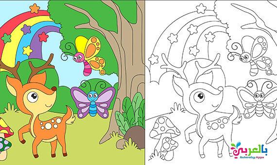 رسومات فراشات وازهار للتلوين .. رسم فصل الربيع للاطفال