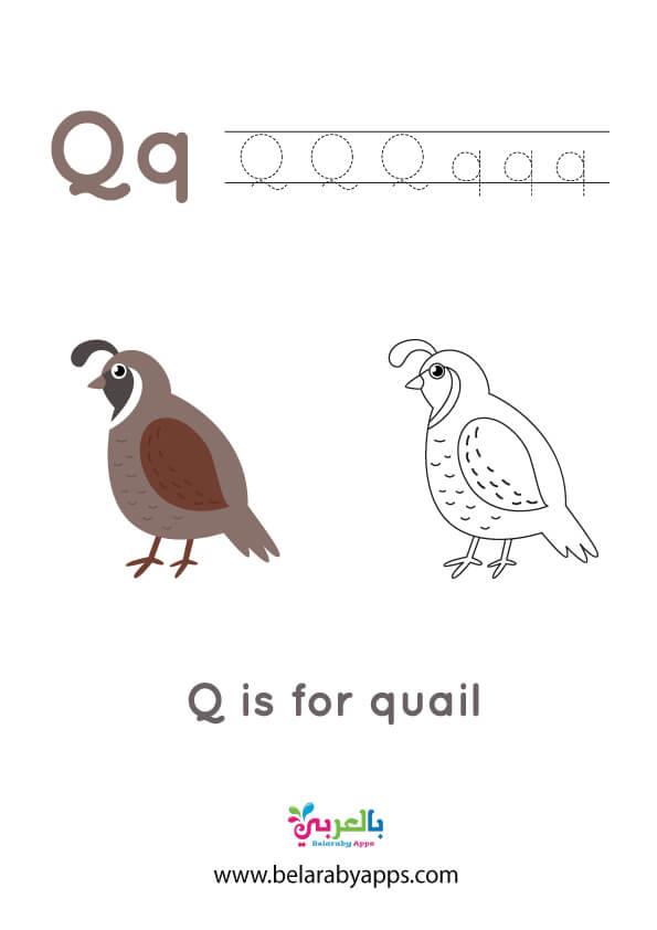 اوراق عمل مميزة للتدريب على كتابة الحروف الابجدية الانجليزية