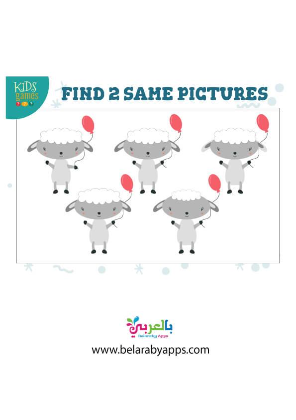 لعبة الصور المتشابهة للحيوانات
