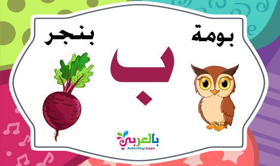 كلمات تبدأ بحرف الباء ( ب ) - اسم حيوان نبات جماد بلاد بحرف ب