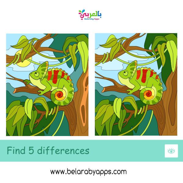 العاب الفرق بين الصور – اوجد خمسة اختلافات بالصورة