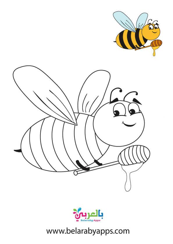 صور نحلة للتلوين للاطفال