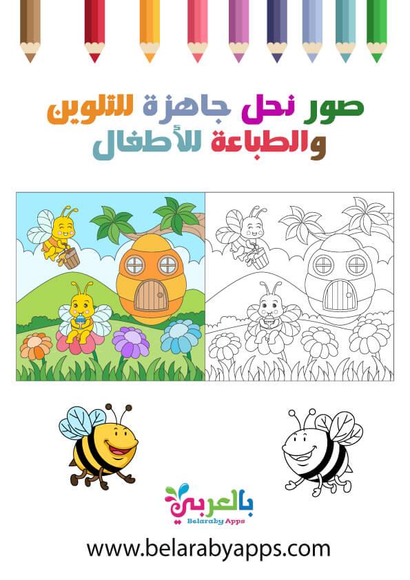 رسومات نحلة للتلوين .. صور نحل جاهزة للتلوين والطباعة pdf