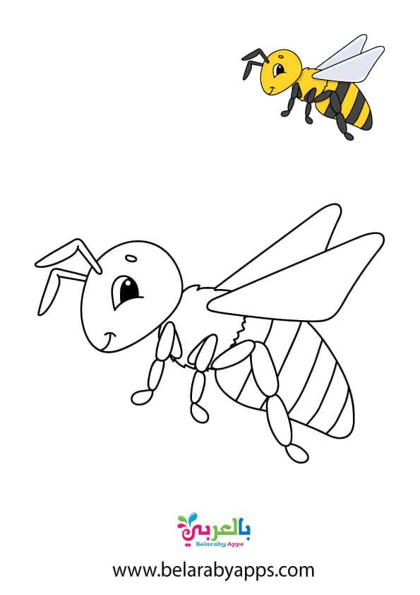 رسم نحلة ابيض واسود للتلوبن للاطفال