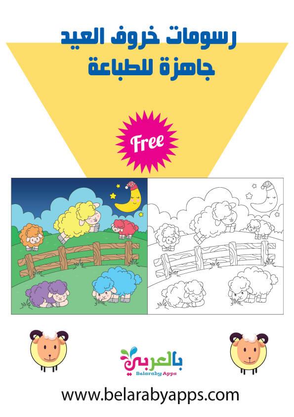 رسومات خروف العيد جاهزة للطباعة .. خروف كرتون للتلوين 2021