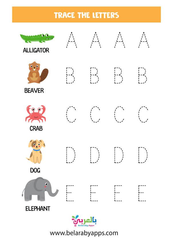 تعليم كتابة الحروف الانجليزية كبتل