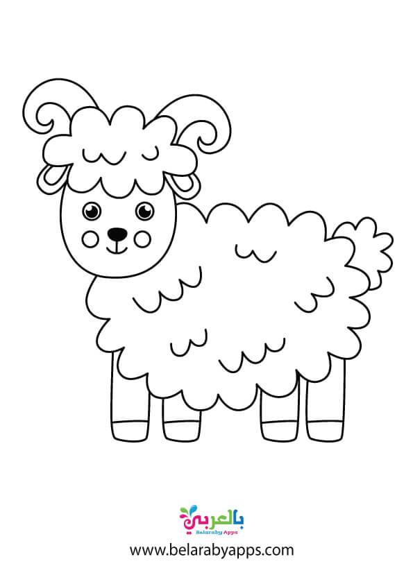 رسومات تلوين خروف لتوزيعات الاطفال