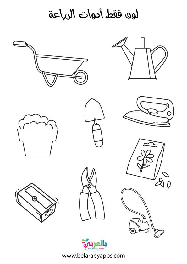 أوراق عمل لوحدة الرمل رياض اطفال .. ادوات الزراعة والرمل