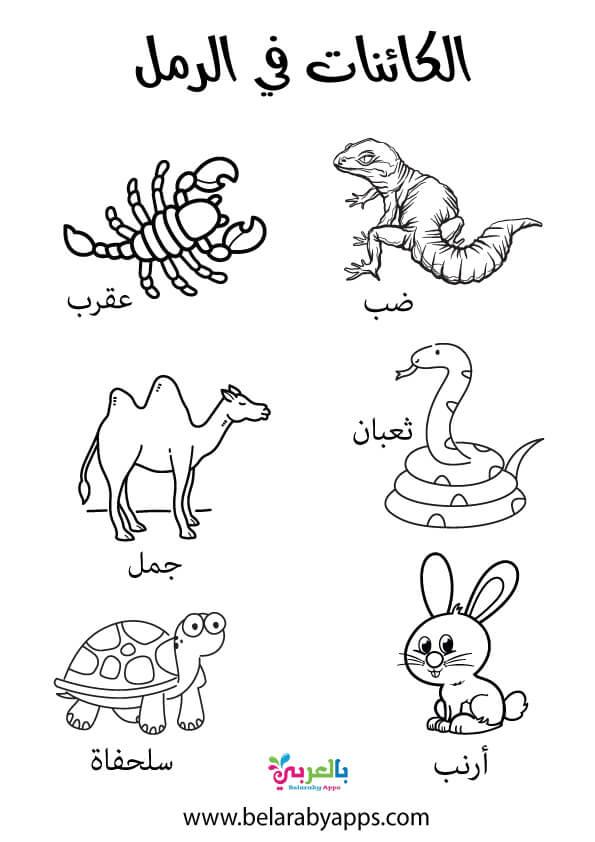 رسومات تلوين الكائنات في الرمل رياض الاطفال
