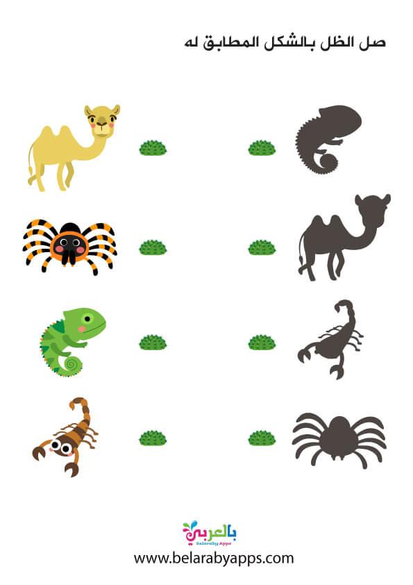 تمرين ادراكي مطابقة الظل لحيوانات تعيش في الرمل
