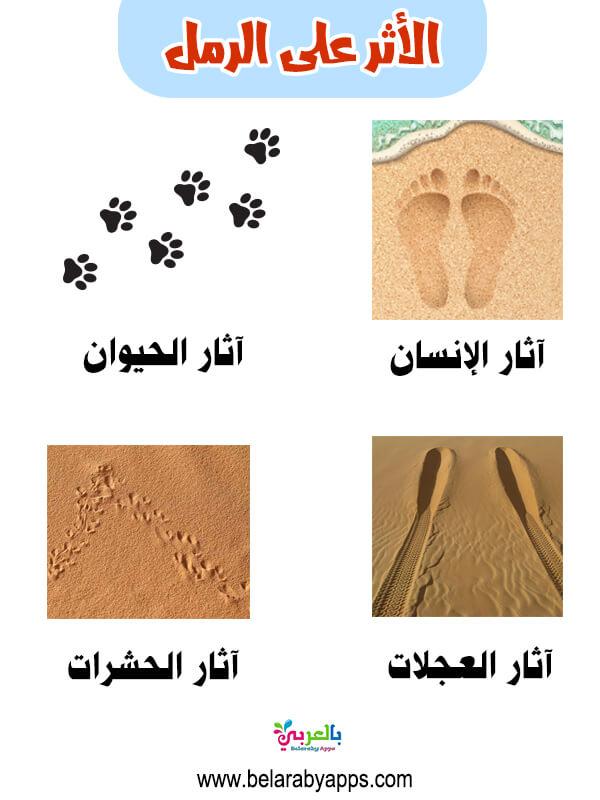 مفهوم الأثر على الرمل بالصور .. وحدة الرمل لرياض الاطفال