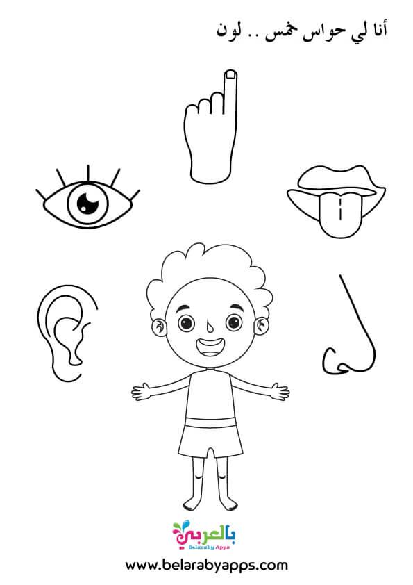 رسومات تلوين الحواس الخمس للاطفال